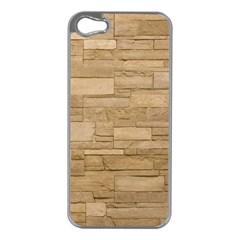 Block Wall 2 Apple Iphone 5 Case (silver) by trendistuff