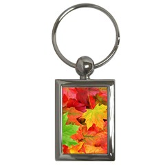 Autumn Leaves 1 Key Chains (rectangle)  by trendistuff
