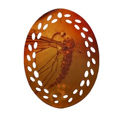 MOSQUITO IN AMBER Ornament (Oval Filigree)  by trendistuff