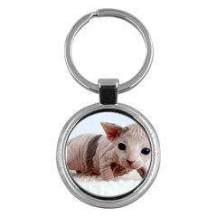 Sphynx Kitten Key Chains (Round)  by TailWags
