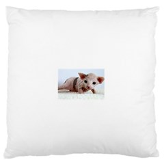 Sphynx Kitten Standard Flano Cushion Cases (Two Sides)