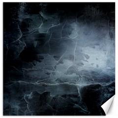 BLACK SPLATTER Canvas 20  x 20   by trendistuff