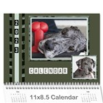 Green Frame Male 2017 Calendar (any year) - Wall Calendar 11  x 8.5  (12-Months)