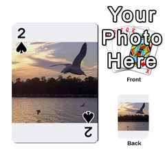 Intercoastal Seagulls 4 Playing Cards 54 Designs  by Jamboo