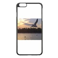 Intercoastal Seagulls 4 Apple Iphone 6 Plus/6s Plus Black Enamel Case