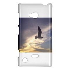Seagull 1 Nokia Lumia 720 by Jamboo