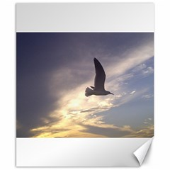 Fly Seagull Canvas 8  x 10  by Jamboo