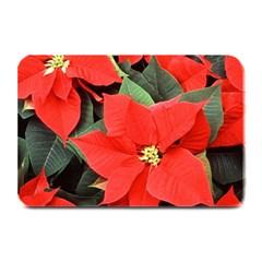 Poinsettia Plate Mats by trendistuff