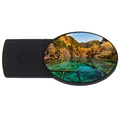 Jiuzhaigou Valley 1 Usb Flash Drive Oval (2 Gb)  by trendistuff