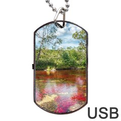 Cano Cristales 3 Dog Tag Usb Flash (two Sides)  by trendistuff