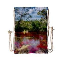 Cano Cristales 3 Drawstring Bag (small) by trendistuff