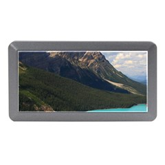 Banff National Park 3 Memory Card Reader (mini) by trendistuff