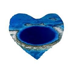 Great Blue Hole 2 Standard 16  Premium Flano Heart Shape Cushions by trendistuff