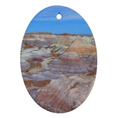 Painted Desert Oval Ornament (two Sides) by trendistuff
