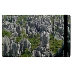 Stone Forest 1 Apple Ipad 3/4 Flip Case by trendistuff