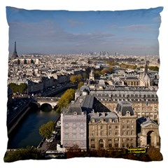 Notre Dame Large Flano Cushion Cases (two Sides)  by trendistuff