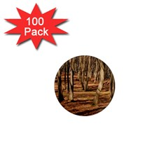 Wood Shadows 1  Mini Magnets (100 Pack)  by trendistuff