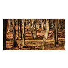 Wood Shadows Satin Shawl by trendistuff