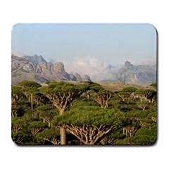 Socotra, Yemen Large Mousepads by trendistuff