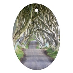 Dark Hedges, Ireland Oval Ornament (two Sides) by trendistuff