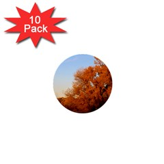 Beautiful Autumn Day 1  Mini Buttons (10 Pack)  by trendistuff