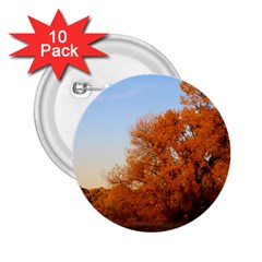 Beautiful Autumn Day 2 25  Buttons (10 Pack)  by trendistuff