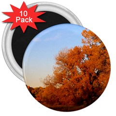 Beautiful Autumn Day 3  Magnets (10 Pack)  by trendistuff