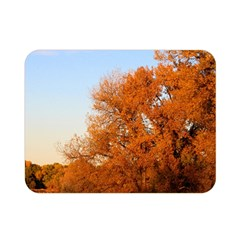 Beautiful Autumn Day Double Sided Flano Blanket (mini)  by trendistuff