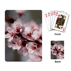 Plum Blossoms Playing Card by trendistuff