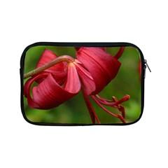 Lilium Red Velvet Apple Ipad Mini Zipper Cases by trendistuff