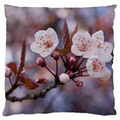 Cherry Blossoms Standard Flano Cushion Cases (one Side)  by trendistuff