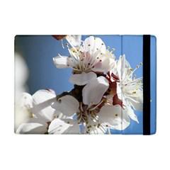 Apricot Blossoms Apple Ipad Mini Flip Case by trendistuff