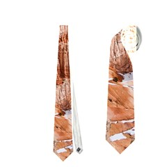 BRYCE CANYON AMP Neckties (Two Side)  by trendistuff
