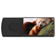 RED PANDA USB Flash Drive Rectangular (2 GB)  by trendistuff