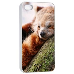 Red Panda Apple Iphone 4/4s Seamless Case (white) by trendistuff