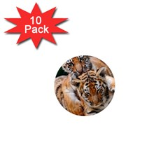 Baby Tigers 1  Mini Magnet (10 Pack)  by trendistuff