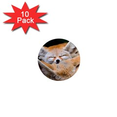 BABY FOX SLEEPING 1  Mini Magnet (10 pack)  by trendistuff