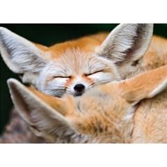 BABY FOX SLEEPING Birthday Cake 3D Greeting Card (7x5)  by trendistuff