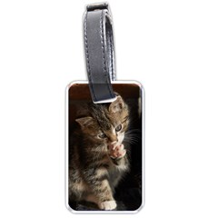 Talk To The Paw Luggage Tags (one Side)  by trendistuff