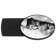 Sleepy Kitty Usb Flash Drive Oval (2 Gb)  by trendistuff