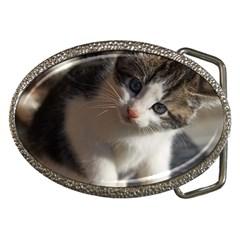 Questioning Kitty Belt Buckles by trendistuff