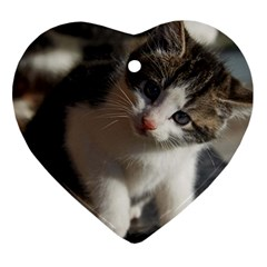 Questioning Kitty Heart Ornament (2 Sides) by trendistuff