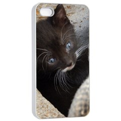 Pretty Blue Eyed Kitty Apple Iphone 4/4s Seamless Case (white) by trendistuff