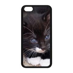Kitty In A Corner Apple Iphone 5c Seamless Case (black) by trendistuff
