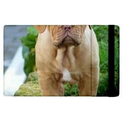 Cute Wrinkly Puppy Apple Ipad 3/4 Flip Case by trendistuff
