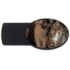 Cute Kitties Usb Flash Drive Oval (2 Gb)  by trendistuff