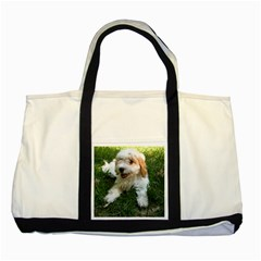 Cute Cavapoo Puppy Two Tone Tote Bag  by trendistuff