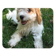 Cute Cavapoo Puppy Double Sided Flano Blanket (large)  by trendistuff