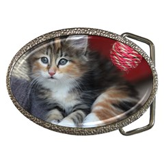 Comfy Kitty Belt Buckles by trendistuff