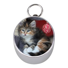 COMFY KITTY Mini Silver Compasses by trendistuff